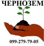 чернозем николаев