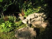 Центр Ландшафтного Дизайна Цветок и Камень