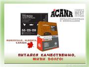 Заказ сухих кормов для кошек и собак Acana и Oridjen