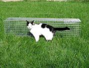 Капкан. Живоловка для кота. Котоловка. Самолов. Клетка. Ловушка. Клеть