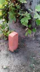 Цегла червона керамічна М-100